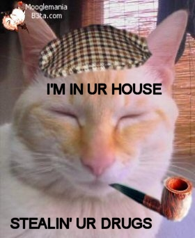 cat_pipe_cap