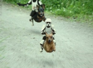 "The new ""K9 Speeder"""