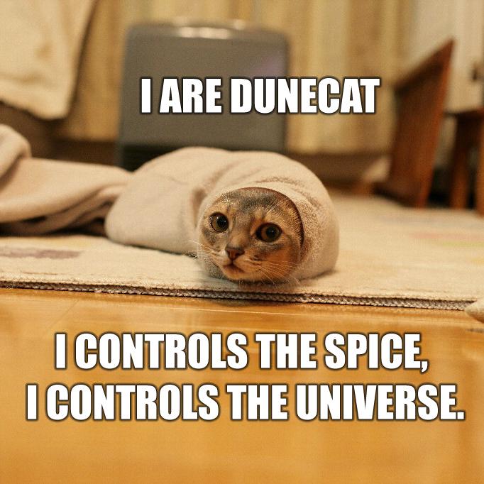 dunecatpd4