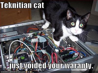 funny-pictures-never-trust-a-feline-technician